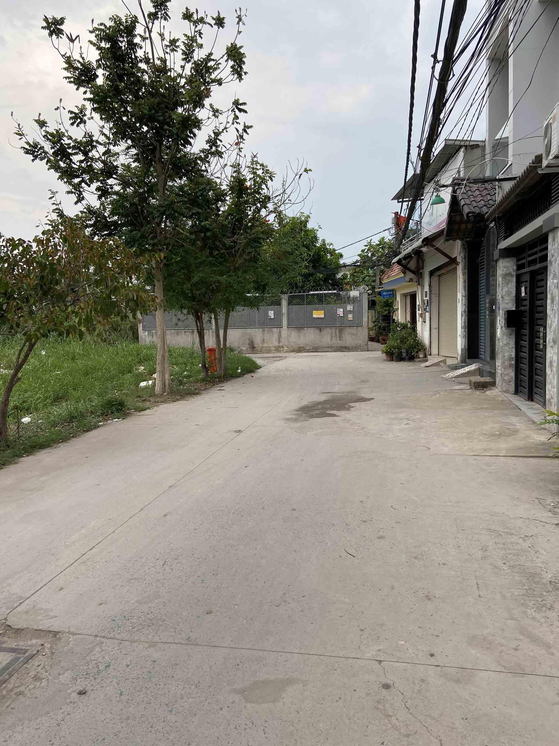 Đường sau nhà